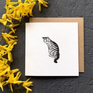 Cat Greetings Card